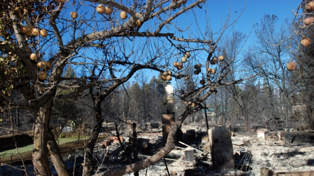 [BAY] Wildfires Create Opportunity for More Water in CA: Professor