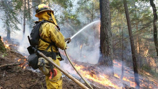 "[BAY] Despite ""Great Progress,"" Fire Spreads to Tahoe Forest"