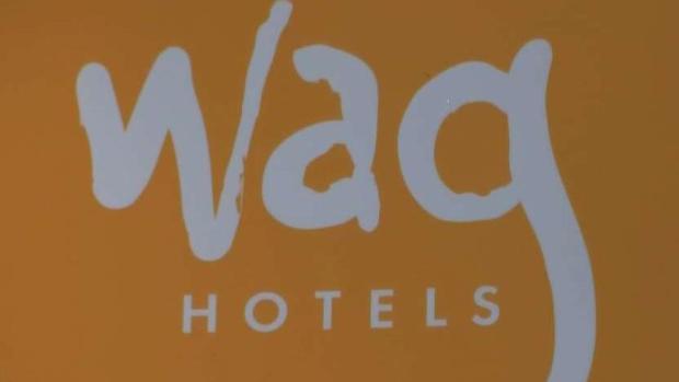 [BAY] Additional Employee Attacked at Wag Hotel in Santa Clara