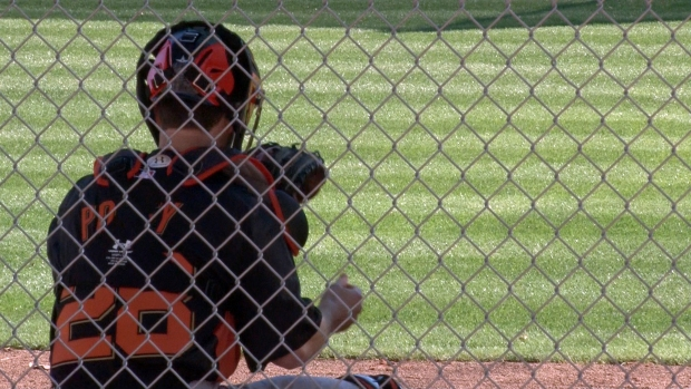 Spring Training 2013: Bay Area Baseball Is Back