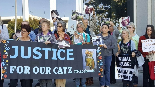 Cat killer sentenced to 16 years in jail