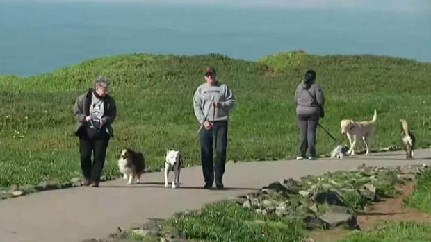 [BAY] Fort Funston in San Francisco Reopens