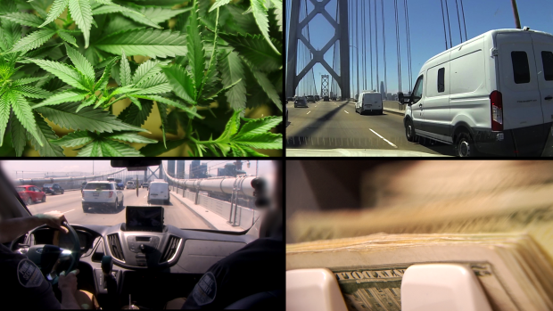 [BAY EMRI DIGITAL] Ride Along Armored Security Used in Cannabis Cash Economy