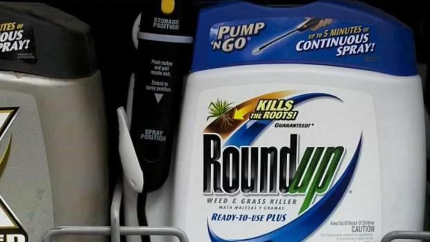 [BAY] Jury: Monsanto Was a Factor in Sonoma County Man's Cancer