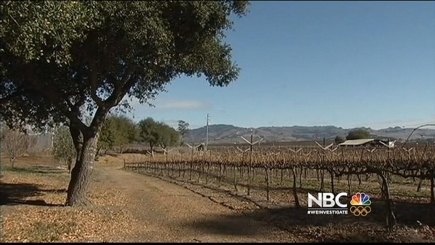 [BAY] California Drought Impacts Napa Valley Vineyards