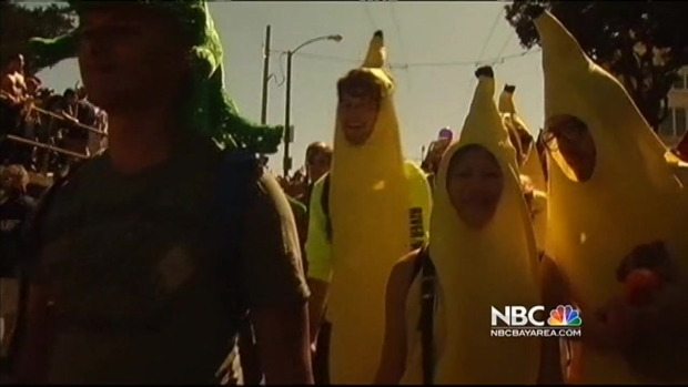 [BAY] San Francisco Emphasize Safety for Bay to Breakers Race