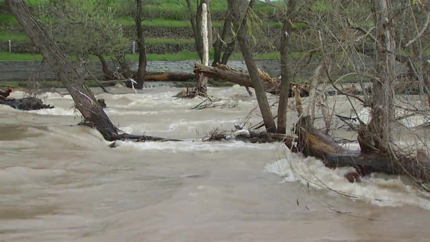 RAW: Guadalupe River Rises and Rushes After Rains in SJ