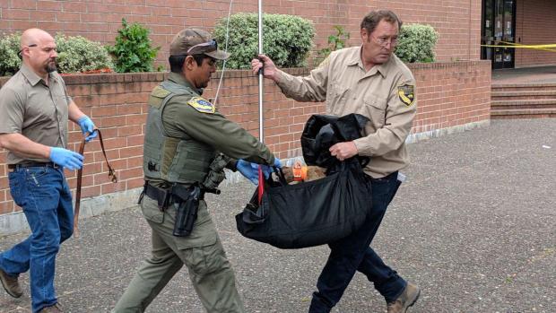 [BAY] Mountain Lion Spotted Near Santa Rosa Mall Captured