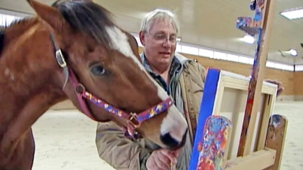 [NATL] Thoroughbred Race Horse Retires, Takes Up Painting