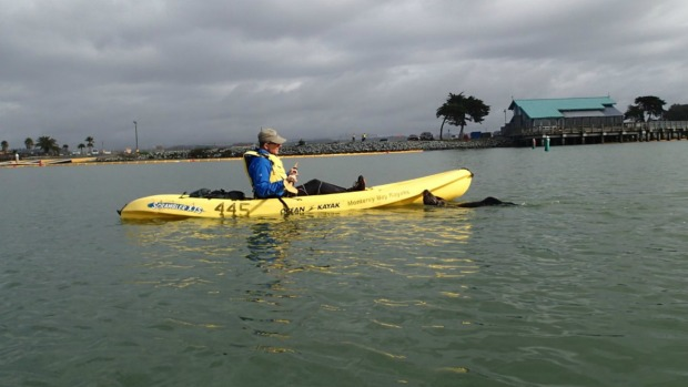 Friendly Otter Jumps onto Man's Kayak