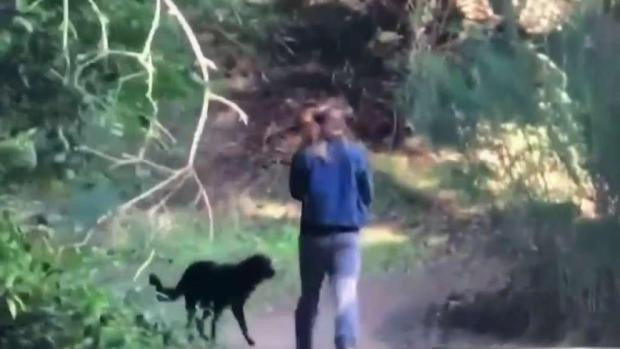 [BAY] Police Seek Suspect Who Attacked Jogger at East Bay Park