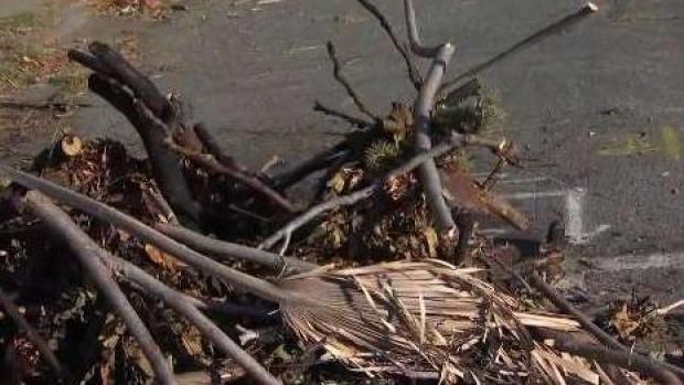 [BAY] Rash of Suspected Arson Fires Has SJ Residents on Edge