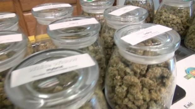 [NATL] Kid-Friendly Cannabis?