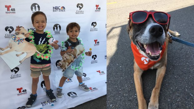 Clear the Shelters Photos: Animals Meet Their New Families