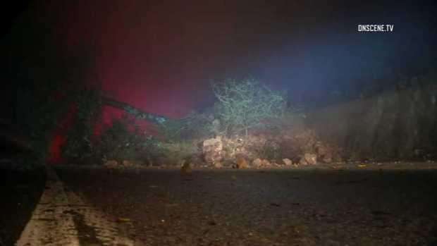 [BAY] Toppled Trees, Mudslides Litter Santa Cruz Mountains