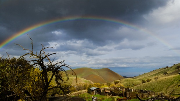 [BAY GALLERY]Bay Area Rainbows Follow Storms