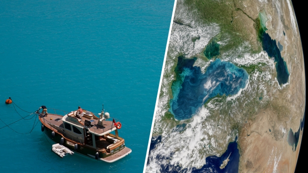Phytoplankton Bloom Turns Istanbul's Dark Waters Turquoise