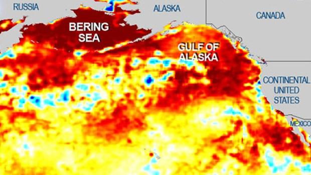 "[BAY] Pacific Ocean ""Blob"" Inching Closer to California: NOAA"