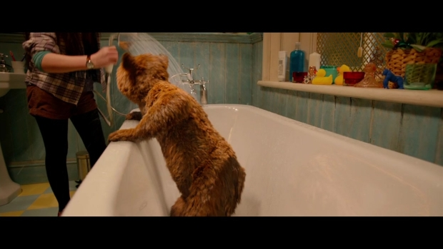 """Paddington"" Trailer"