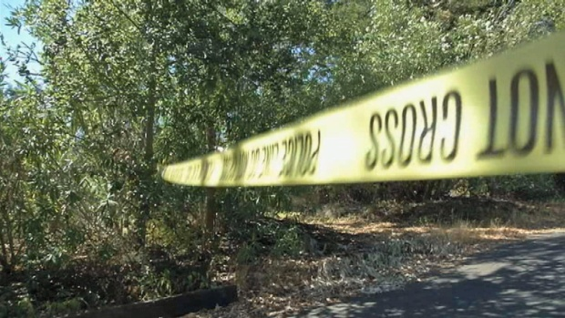 [BAY] Police: Walnut Creek Woman Kidnapped From Front Yard