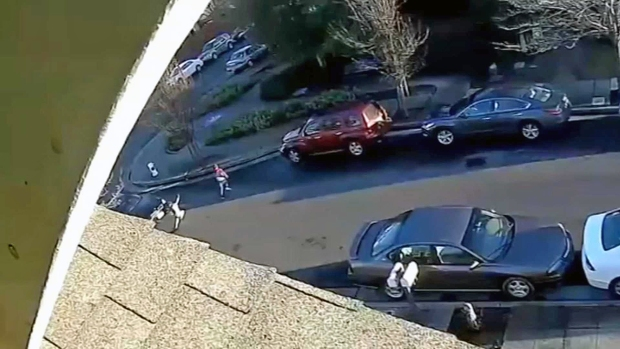 [BAY] Police Search For Driver Who Hit Girl, 7, in Santa Rosa