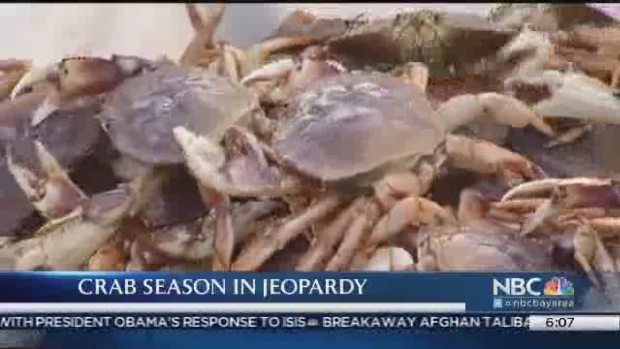 [BAY] Potentially Deadly Levels of Domoic Acid in Crabs Prompts Emergency Meeting in Sacramento