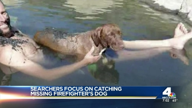 [LA] Rescuers Hope to Find Missing Firefighter's Dog