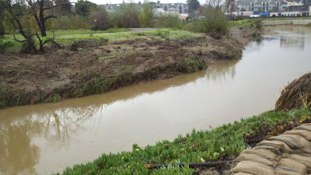 "[BAY] ""Perfect Storm"" Led to San Francisquito Creek Flooding"