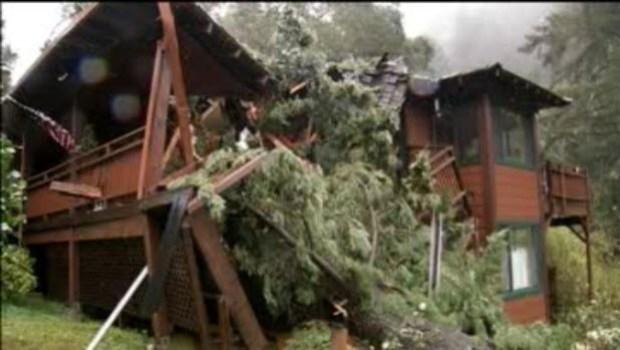 [BAY] Tree Crashes Into house in Santa Cruz Mountains