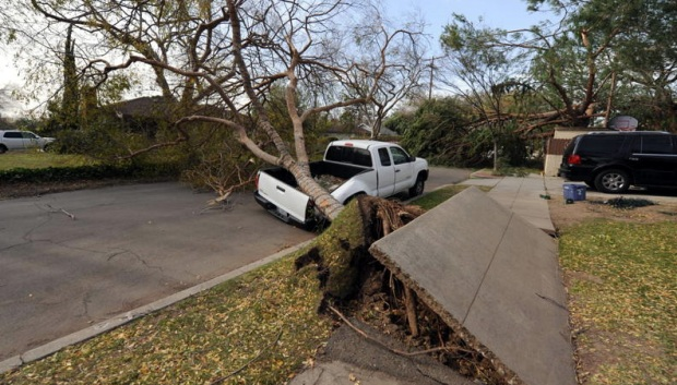 Viewer Images: Wind Damage