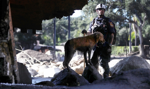 [LA GALLERY] Photos: Search Dogs and Their Handlers Face Piles of Debris, Thick Mud in Montecito