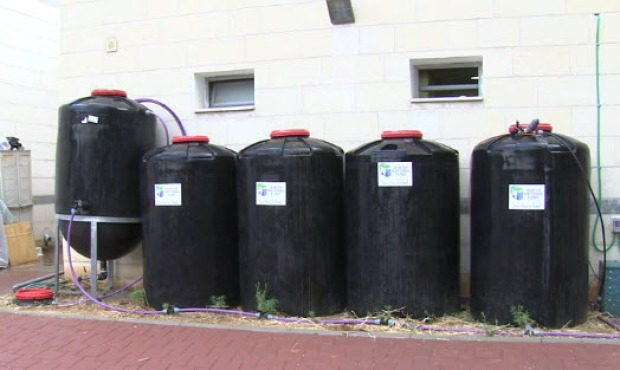 Saving Water in Israel's Schools