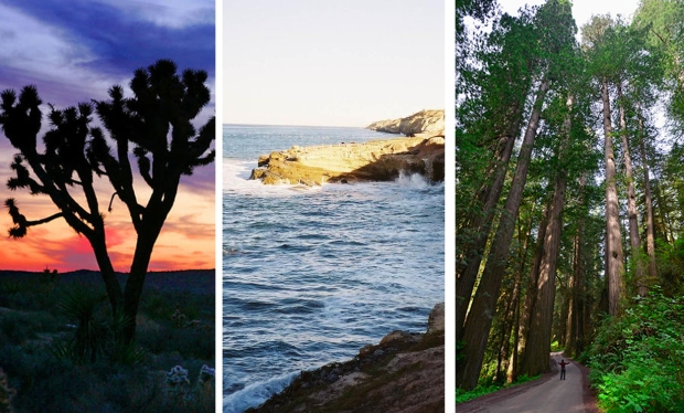 See Dramatic Sights at These National Parks in California