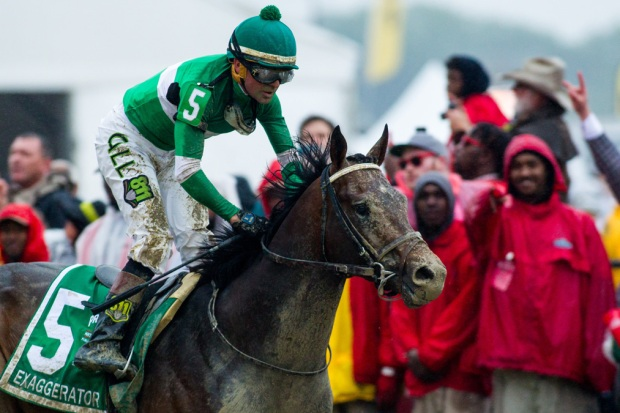 [NATL] Road to the Triple Crown: Exaggerator Wins Preakness