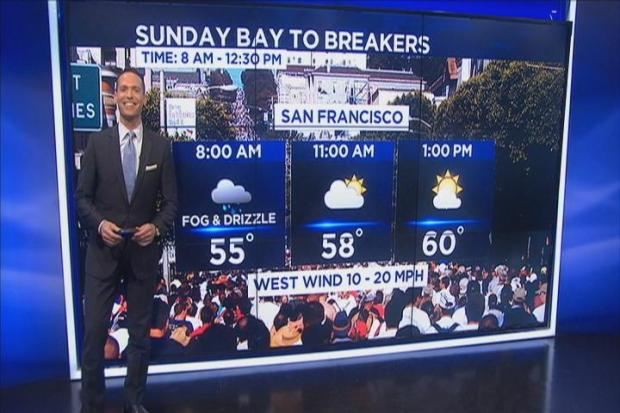 Bay To Breakers Forecast