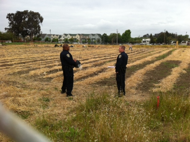Occupy The Farm Gets Ousted. Again.