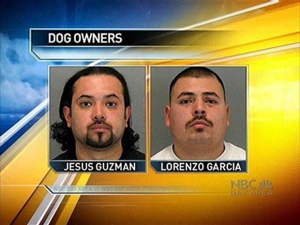 [BAY] Two Dogs Seriously Maul Woman