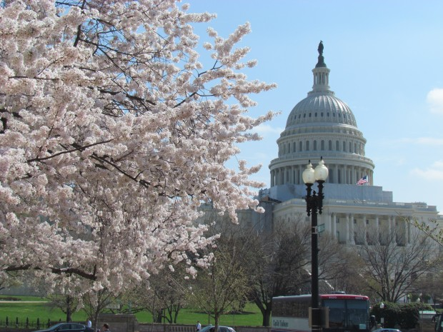 [BAY] Children of the Fields: Congress Reacts