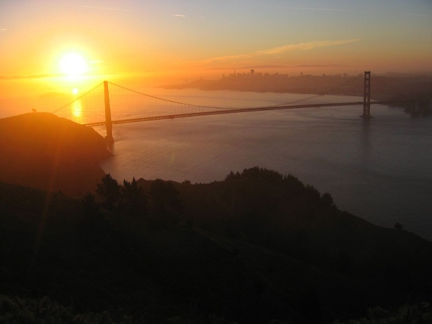 The Bay's Best in Pictures