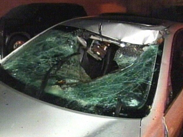 Tree Branch Crushes Car, Nearly Kills Driver