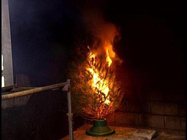 [DFW] Firefighters Offer Tips on Avoiding Tree Fires