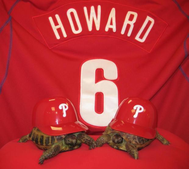 Phillies Pet Phanatics