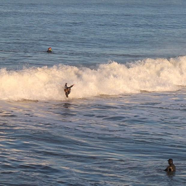 [BAY] Surfs Up! Mavericks Will Be Held Sunday