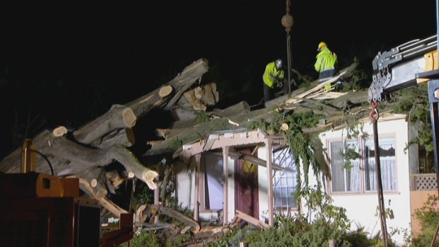 [BAY] Storms Leave Behind Damage in Bay Area
