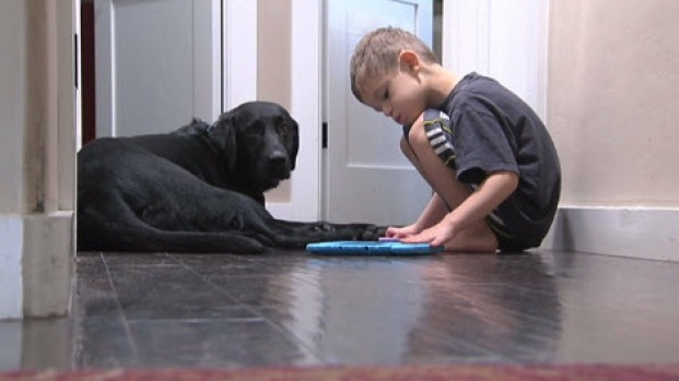 [BAY] Parents Claim Service Dogs Not Properly Trained to Help Children with Autism