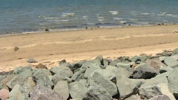 [DGO] Bright Future Moves Closer For Chula Vista's Bayfront