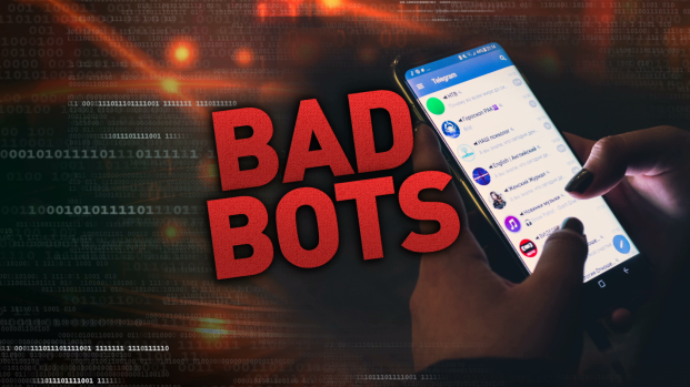 How to Battle the Bad Bots