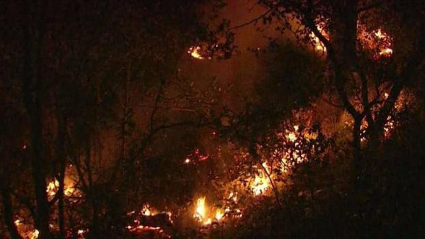 Brush Fire in Oakland Hills Causes Power Outage, Evacuations at UC Berkeley