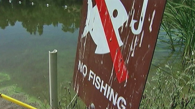 Lake Temescal in Oakland Closed Because of Toxic Algae Bloom
