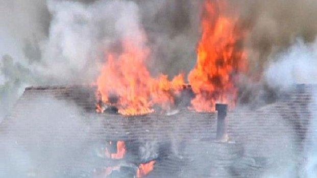 Dogs Survive Lemon Grove House Fire